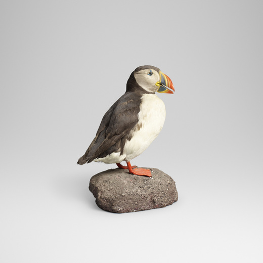OLE HØEGH POST Puffin estimate: $300–500 result: $3,250
